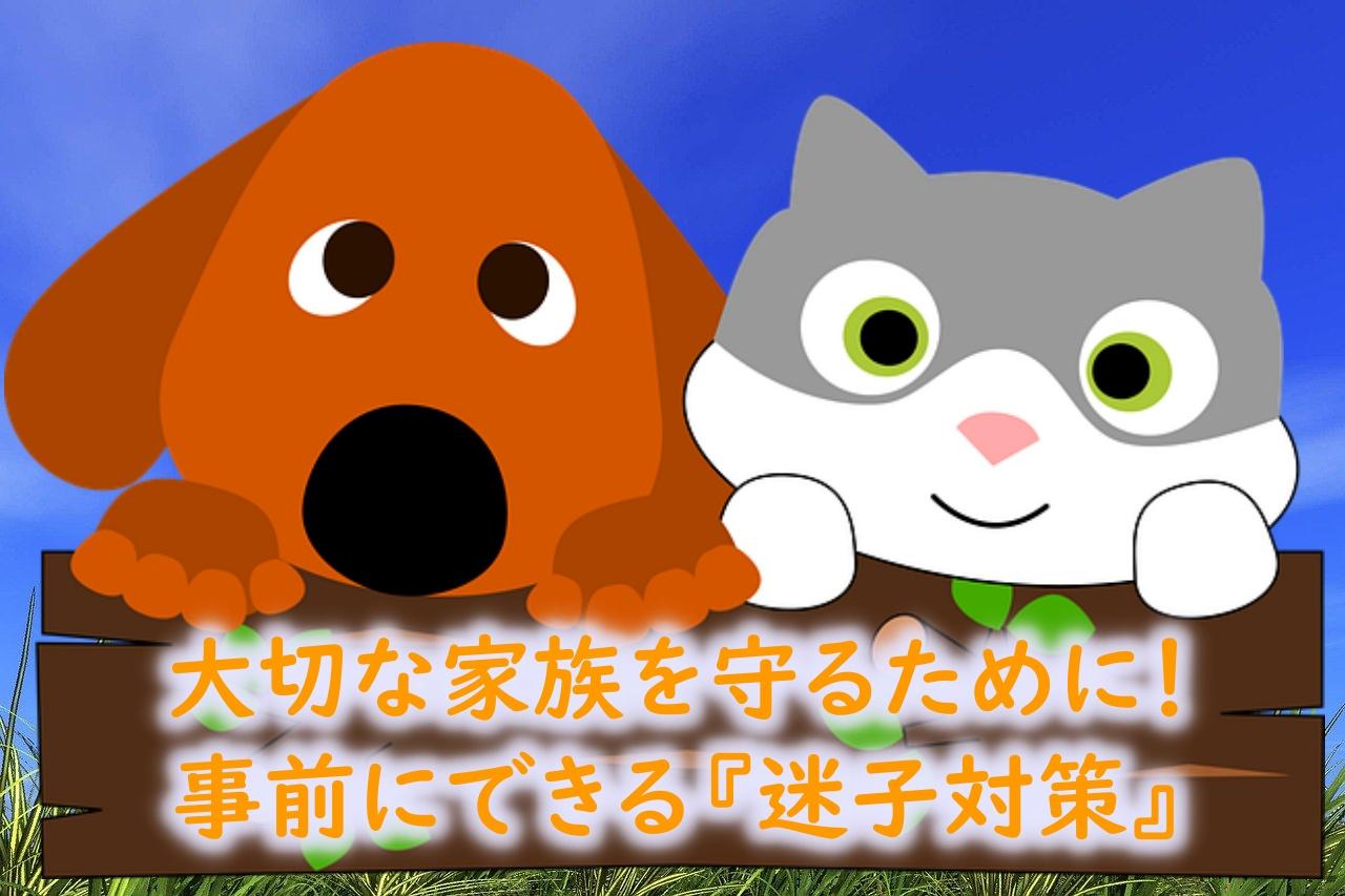 迷子札とネットワークの連携でペットの迷子対策を!【ペットのおうち】